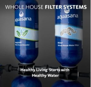whole house water filtration and softener system reviews